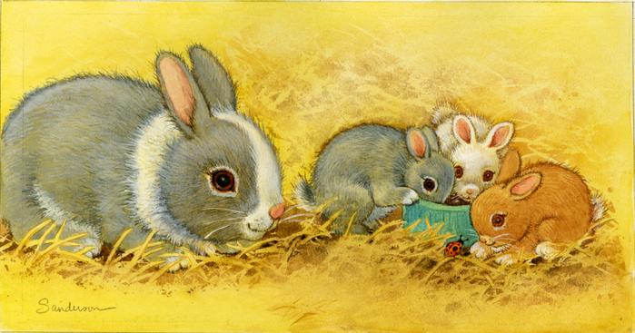 Картинки надписями, заяц с зайчатами картинки для детей