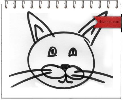 О кошках, Родине и счастье