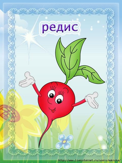 Картинки овощи с надписями детский сад