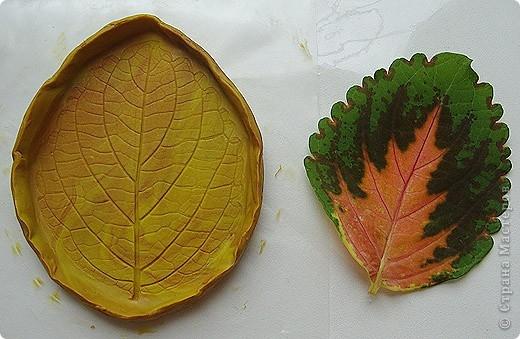Розы из холодного фарфора и как сделать молды для лепки листьев (13) (520x339, 145Kb)
