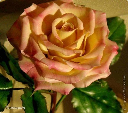 Розы из холодного фарфора и как сделать молды для лепки листьев (17) (520x458, 123Kb)