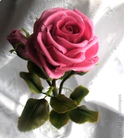 Розы из холодного фарфора и как сделать молды для лепки листьев (32) (432x480, 97Kb)