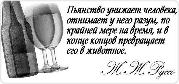 сложная организация статусы со смыслом в картинках про алкоголь самый