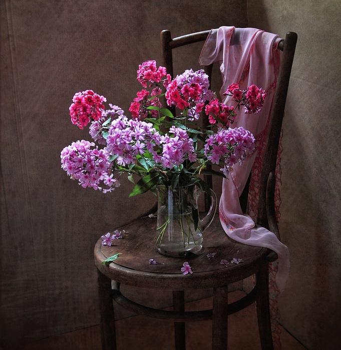 Картинки цветы на стуле