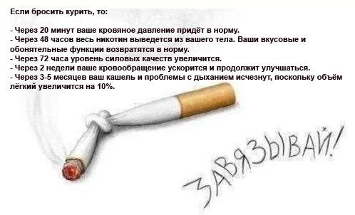 картинка что будет если не бросить курит миниатюрная блестяшка родила