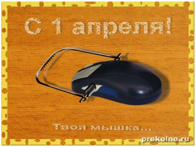 http://img1.liveinternet.ru/images/attach/c/8/99/227/99227161_large_1b97b58cde26.jpg