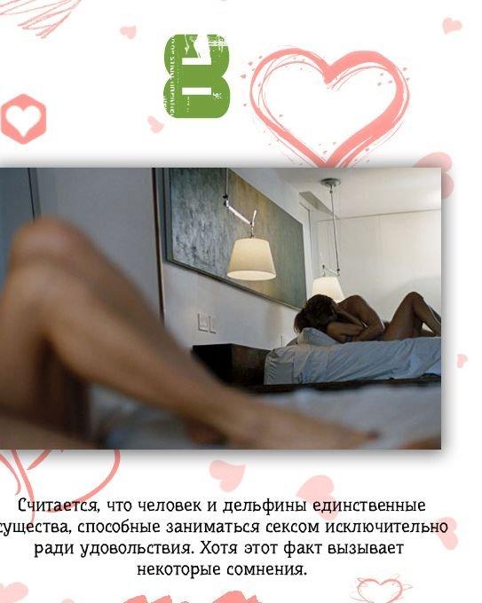 fakty_o_sekse_17_foto_8 (543x680, 54Kb)