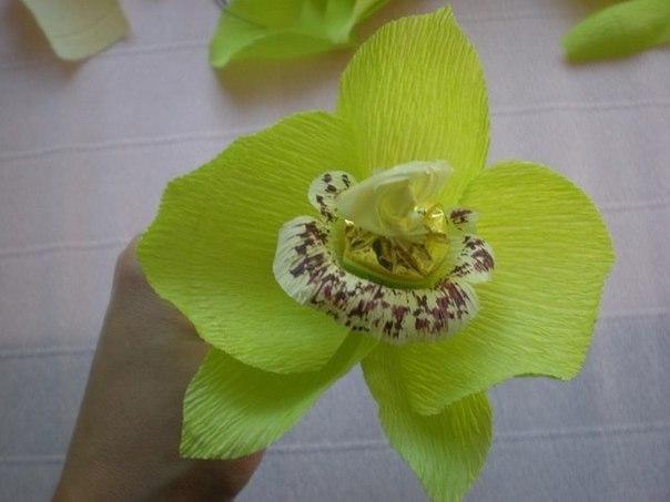 Цветы из гофрированной бумаги орхидея