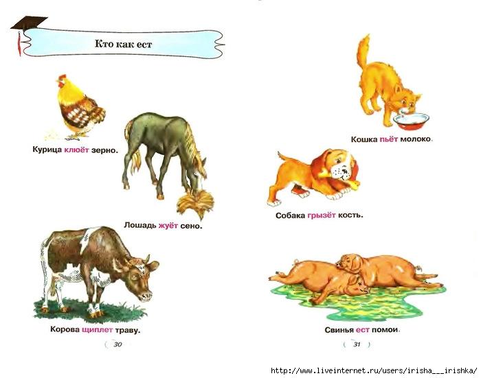 Конспект занятия животные и их детеныши картинки