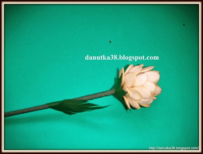 Цветы из семечек тыквы