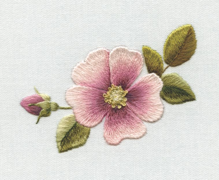 1308995394_complete-dog-rose1 (700x576, 366Kb)