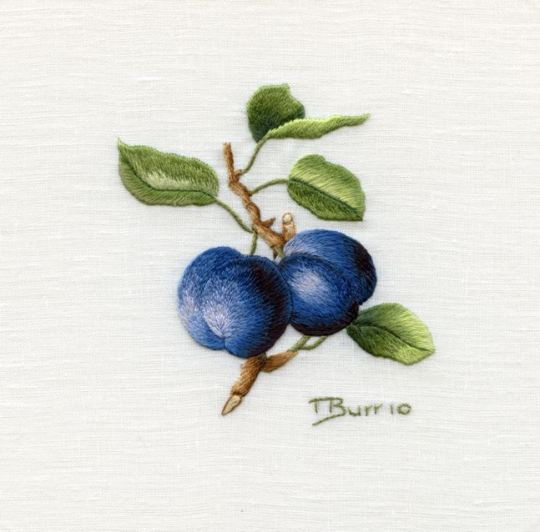1308996316_blue-plums (540x532, 131Kb)