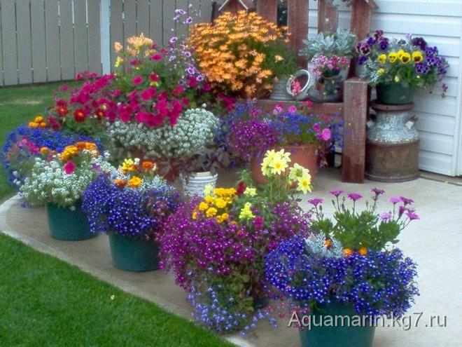 Различные идеи с кувшинами и амфорами для сада