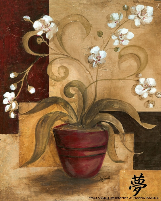 Asian_Orchid_2_Dream (560x700, 347Kb)
