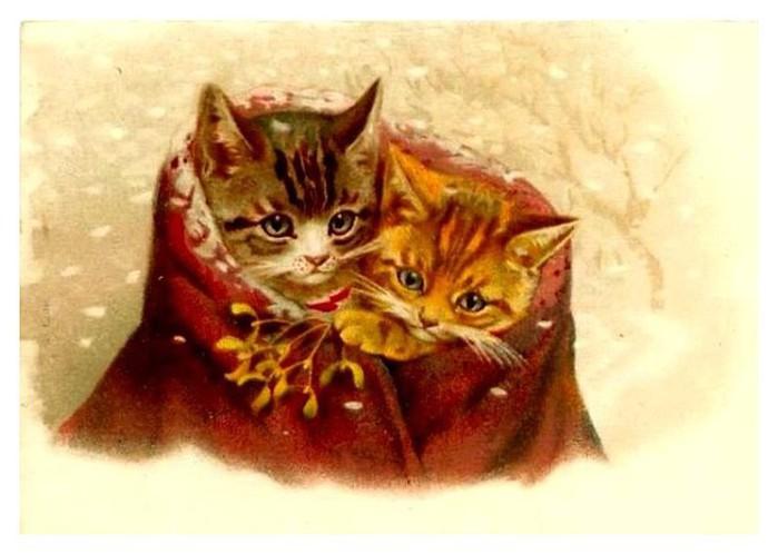 Ретро открытка кот, день