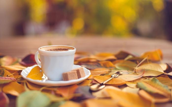 Дозволь я запрошу тебе на каву