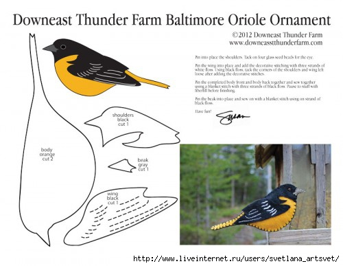 5341674_baltimoreoriolepatternpic500x387 (500x387, 97Kb)