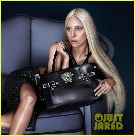 lady-gaga-new-face-versace-spring-2014-02 (566x568, 69Kb)