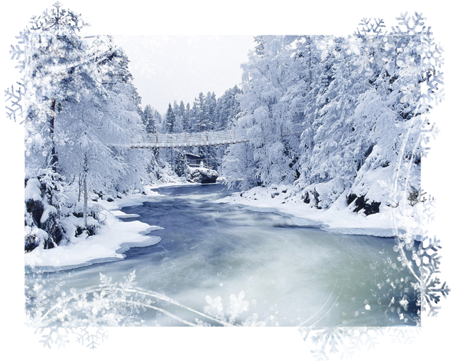 Winter_wallpapers_Winter_Forest_019431_ (650x520, 694Kb)