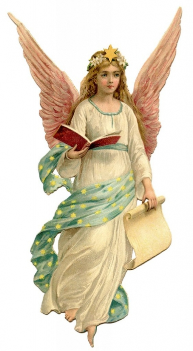 4964063_AngelChristmasGraphicsFairy1563x1024 (385x700, 157Kb)