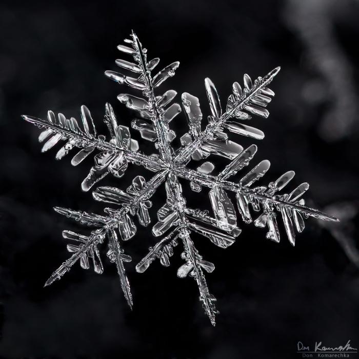 снежинка рисунок фото попала