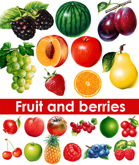Fruit and Berries Photo Stock (485x576, 328Kb)