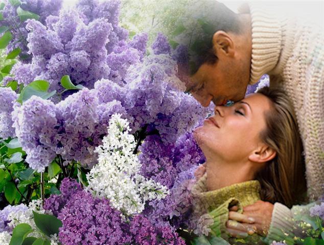 Такое видение предвещает удачное время, жизненный расцвет, благоприятствование обстоятельств.