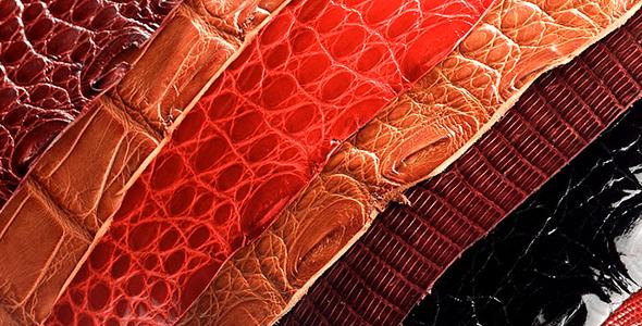 7d7b8b5ae6f5 Кожа: виды кожи, способы выделки кожи.. Обсуждение на LiveInternet - Российский  Сервис Онлайн-Дневников