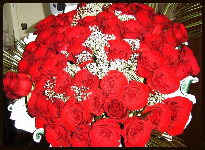 Поздравления на день рождения миллион алых роз