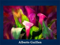 5107871_Alberto_Guillen (200x150, 14Kb)/5107871_Alberto_Guillen (250x188, 75Kb)
