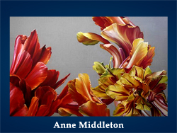 Anne Middleton (200x150, 39Kb)/5107871_Anne_Middleton (250x188, 86Kb)
