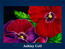 Ashley Coll (200x150, 54Kb)/5107871_Ashley_Coll (250x188, 81Kb)