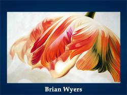 Brian Wyers (200x150, 73Kb)/5107871_Brian_Wyers (250x188, 79Kb)