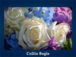 Collin Bogle (200x150, 45Kb)/5107871_Collin_Bogle (250x188, 79Kb)