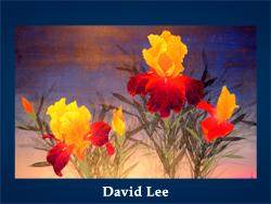 David Lee (200x150, 63Kb)/5107871_David_Lee (250x188, 88Kb)