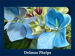 Delmus Phelps (200x150, 61Kb)/5107871_Delmus_Phelps (250x188, 86Kb)