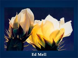 Ed Mell (200x150, 38Kb)/5107871_Ed_Mell (250x188, 82Kb)