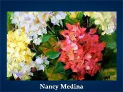 Nancy Medina (200x150, 43Kb)/5107871_Nancy_Medina (250x188, 88Kb)