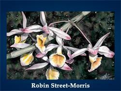 Robin Street Morris (200x150, 56Kb)/5107871_Robin_StreetMorris (250x188, 90Kb)
