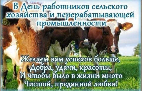 Поздравительная картинка с днем работника сельского хозяйства