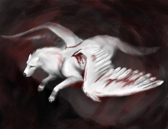 фото человека волка с крыльями мои