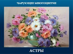 5107871_ASTRI (250x188, 86Kb)