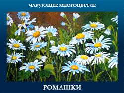5107871_ROMAShKI (250x188, 107Kb)