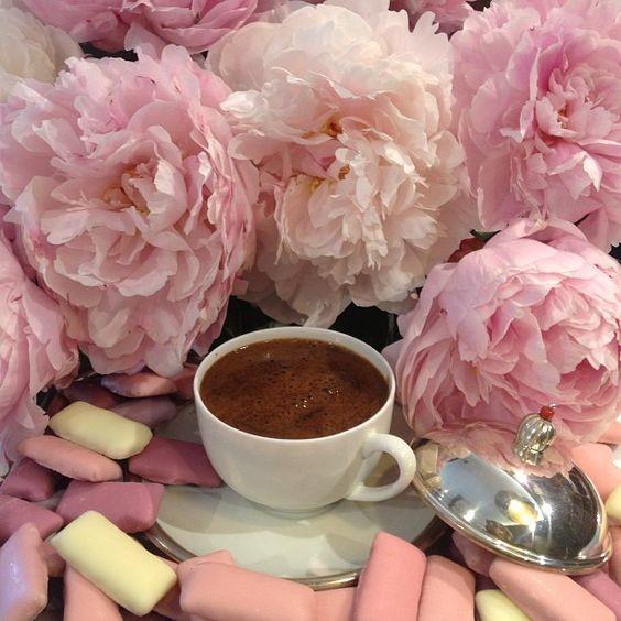 красивые картинки нежные пионы завтрак красивых анимированных