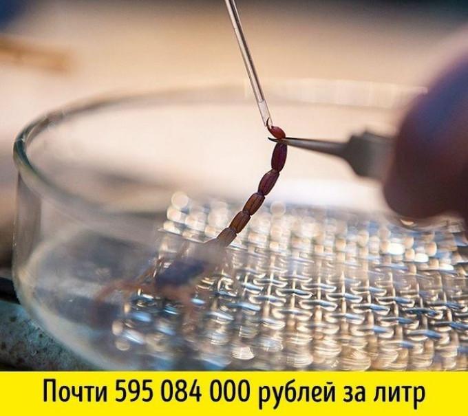4003916_20180125_180926 (680x605, 105Kb)