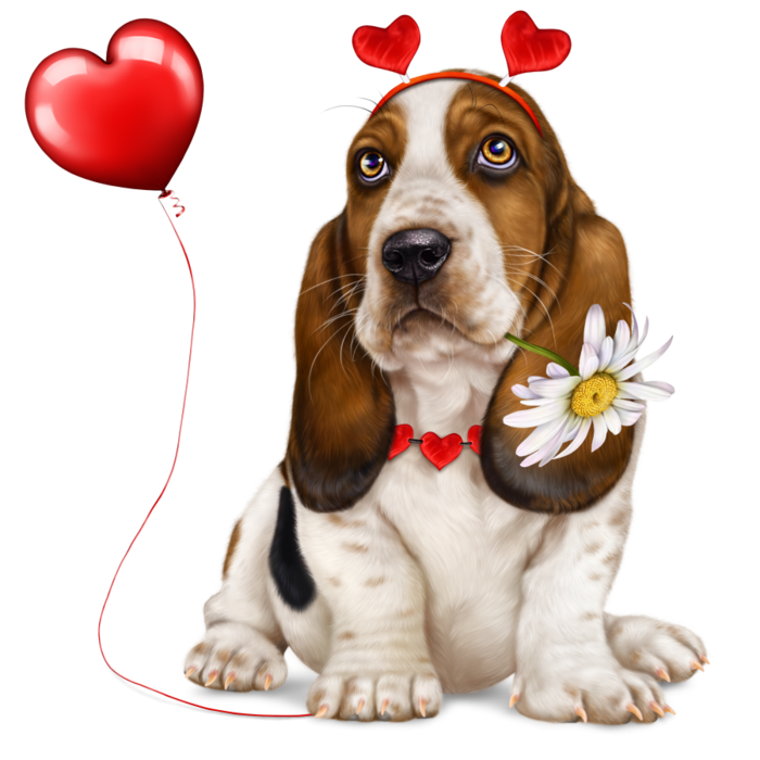 6314590_lonely_heart_basset_hound1 (700x700, 421Kb)