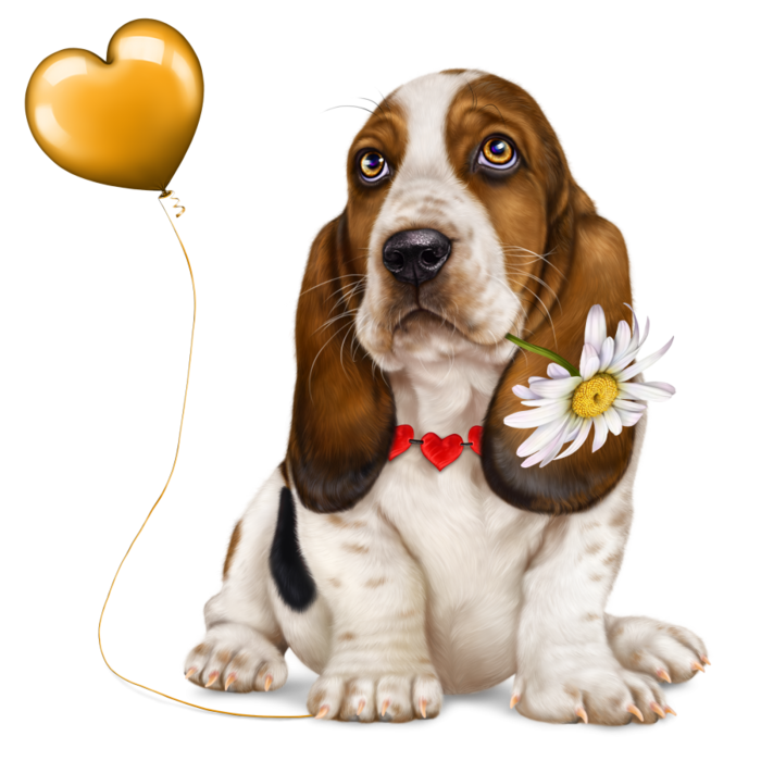 6314590_lonely_heart_basset_hound3 (700x700, 408Kb)