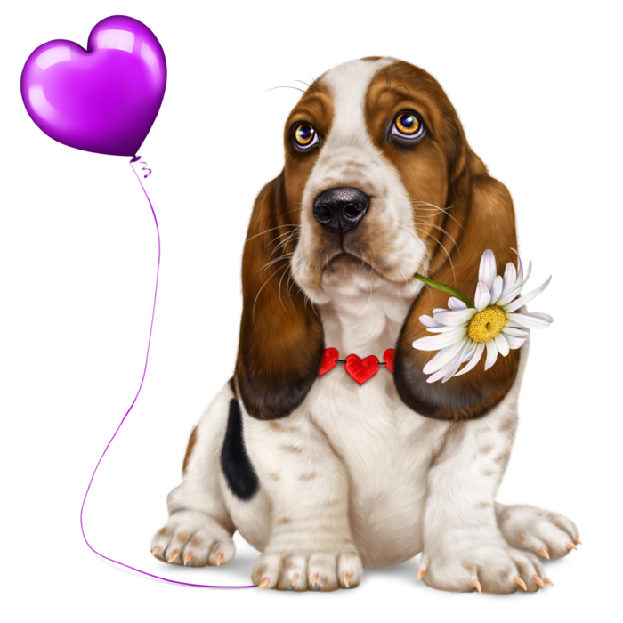 6314590_lonely_heart_basset_hound5 (700x700, 409Kb)