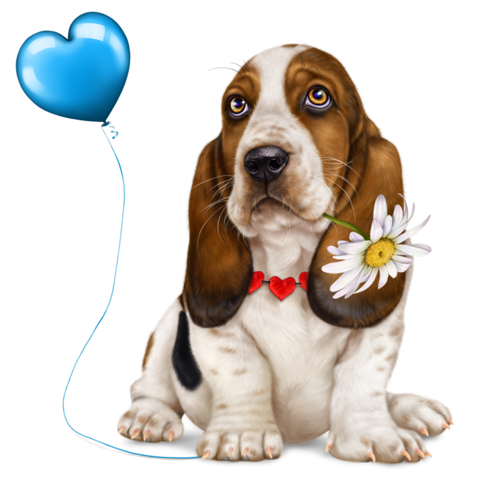 6314590_lonely_heart_basset_hound7 (700x700, 409Kb)