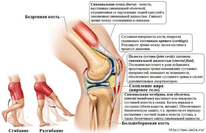 Артрит артроз голеностопного сустава лечение